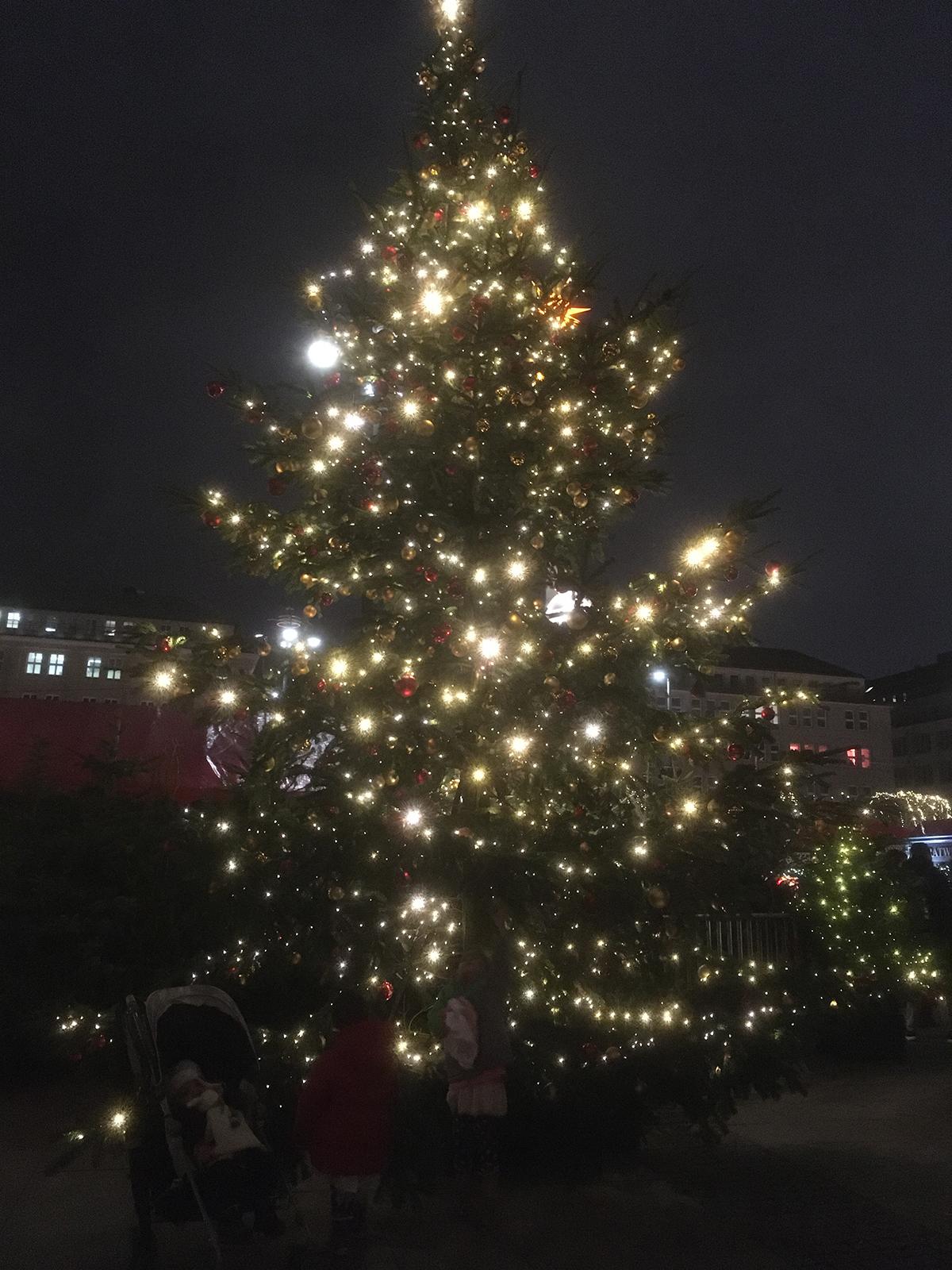 Rathaus Marktにあった大きなクリスマスツリー