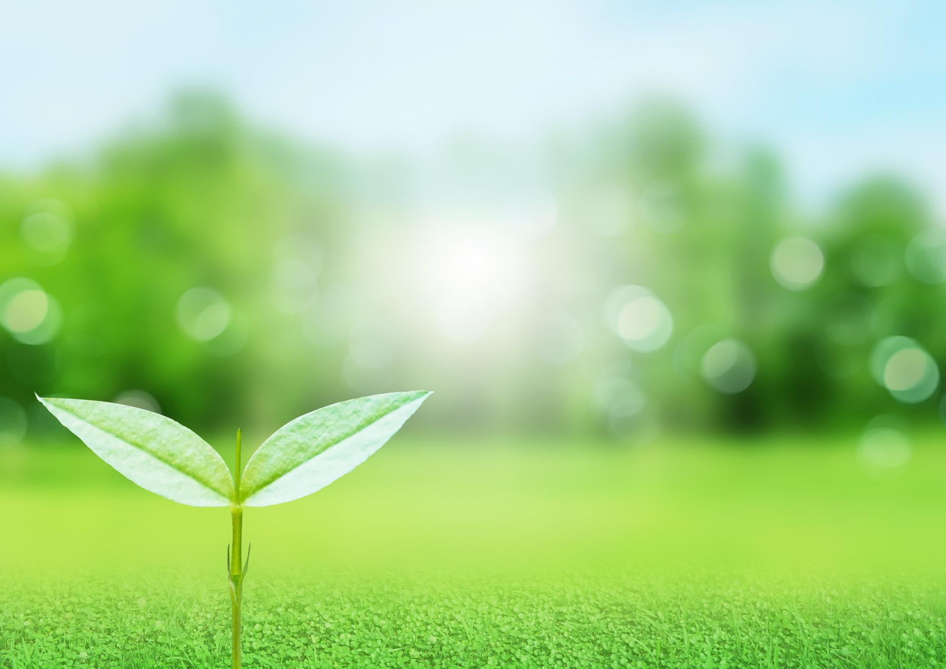 6月「環境月間」:再エネ100%目標、その他活動など